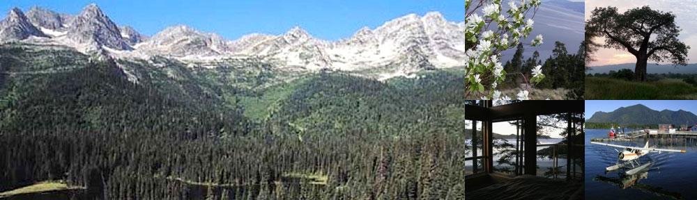 Mountain Peak Ministries